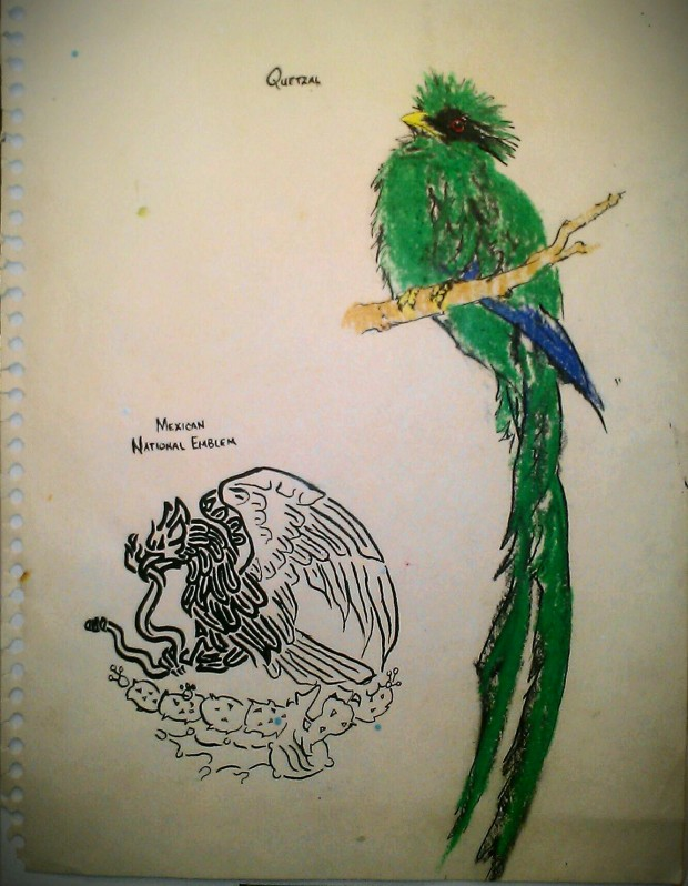 PORTFOLIO FLASHBACK: QUETZAL and MEXICAN EAGLE, Studies in Colored Pencil and Ink, 1998